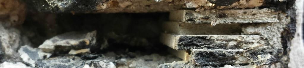 Asbest-vezels-sanering-blootstelling